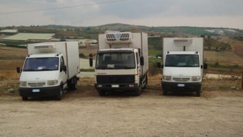 fast-fazio-solution-truck-brighi-canicatti-024-1920w